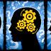 ¿Qué Es La Neuroeconomía?