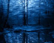 Imágenes de paisajes de invierno. Publicado por anaid en 08:02