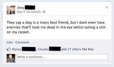 facebook der Hund ist der beste Freund des Menschen