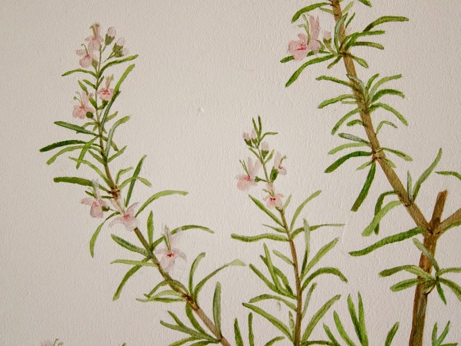 Wandmalerei Acryl auf Putz Rosmarin Detailansicht