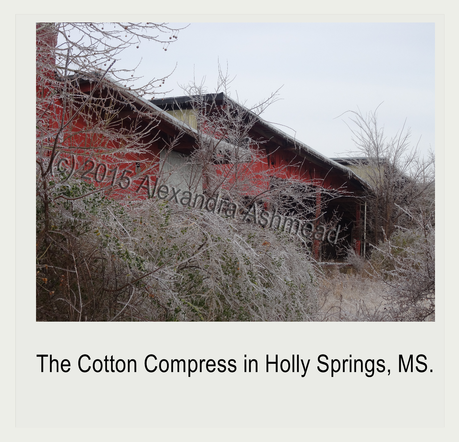 Holly Springs Cotton Compress After a Snow Storm (c) 2015 Alexandra Ashmead