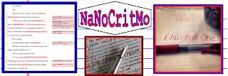 NaNoCritMo