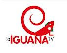 LA IGUANA TV