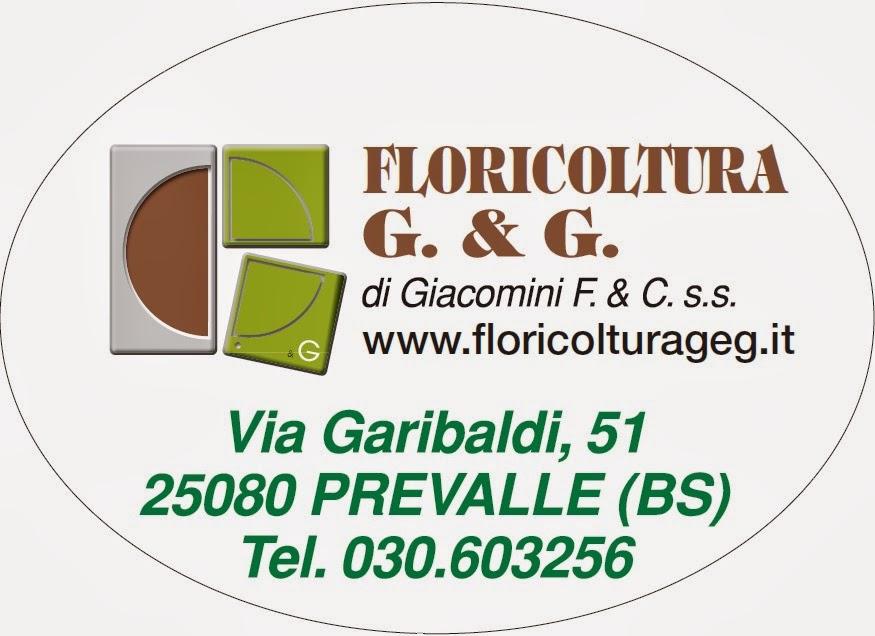 FLORICOLTURA G.& G.
