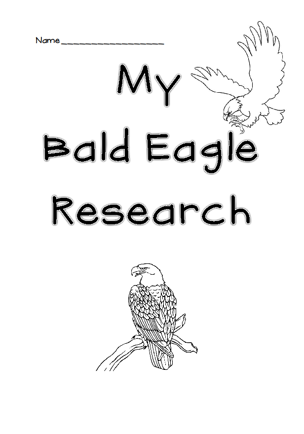 bald eagle research paper American bald eagle worksheet american bald eagle (18 ratings)  help your child observe veterans day by having him create a paper chain american flag it's a fun.