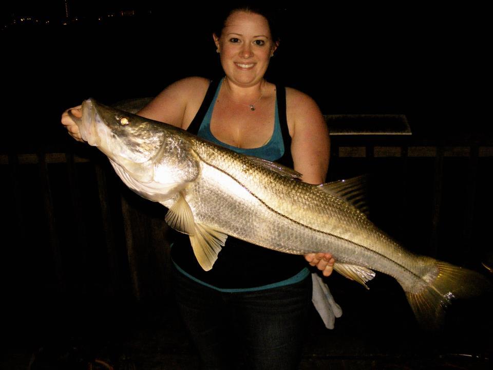 Snook related keywords snook long tail keywords keywordsking for Fish hunt fl