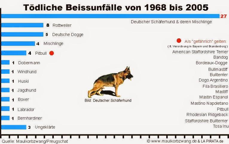 Kampfhund Was Ist Das El Dog Rado De