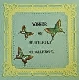 Butterfly Challenge winner