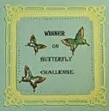 Butterfly Challenge winner