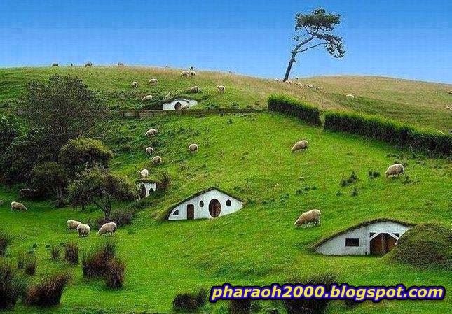 قرية الهوبيت، نيوزيلندا