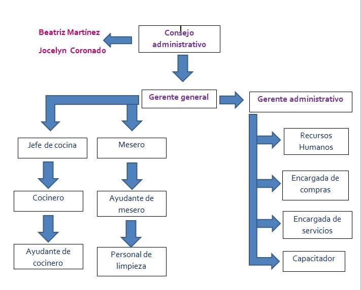 24 bonito organigrama cocina galer a de im genes for Estructura de una cocina industrial