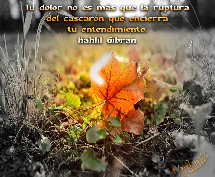 El dolor: Kahlil Gibran  ~ Frases  ~ Hoja, naturaleza
