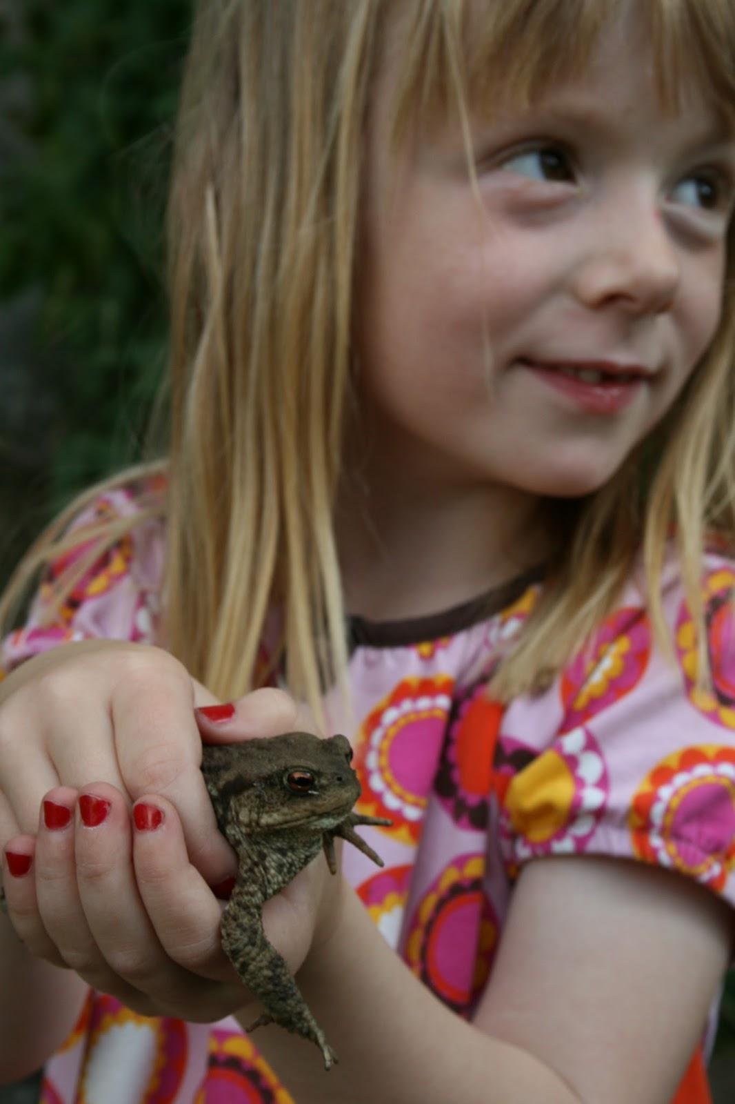 grodor paddor i trädgården