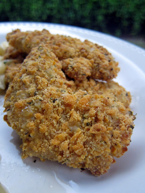 Double Cheese Chicken Fingers Recipe - baked chicken tenders coated in parmesan and Cheez-Its! SOOOO good! Can make coat ahead of time and freezer for later. Kids gobble these up (adults too!)!