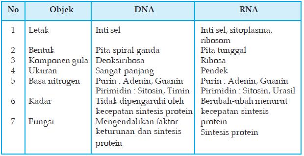 Tabel Perbedaan RNA Dan DNA