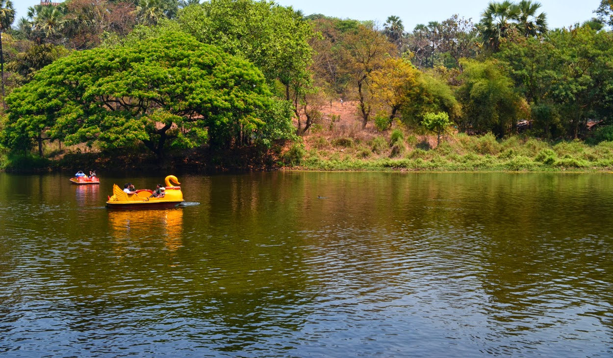 Boating in National Park
