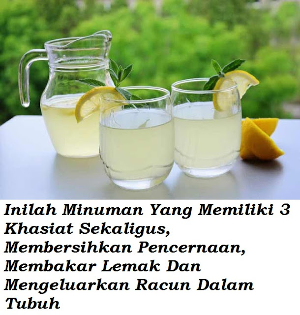 12 Khasiat Lemon Yang Menakjubkan Terutama Membakar Lemak