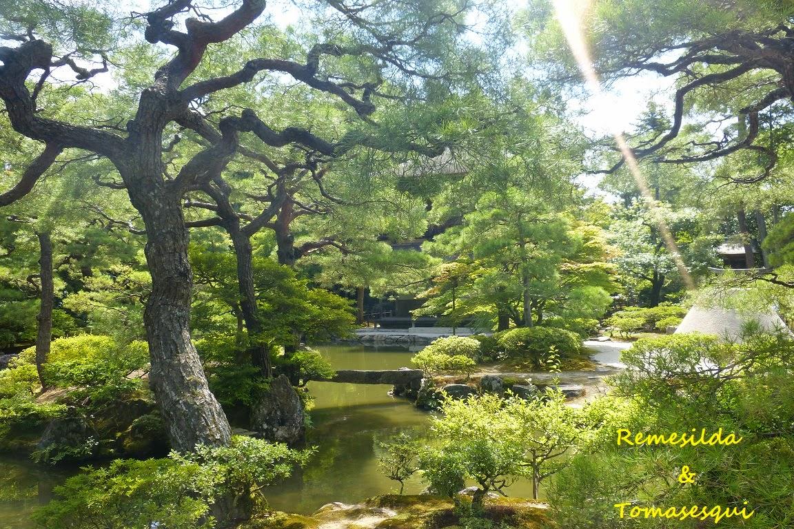 Jard n en kyoto jap n plantukis for Jardin kyoto