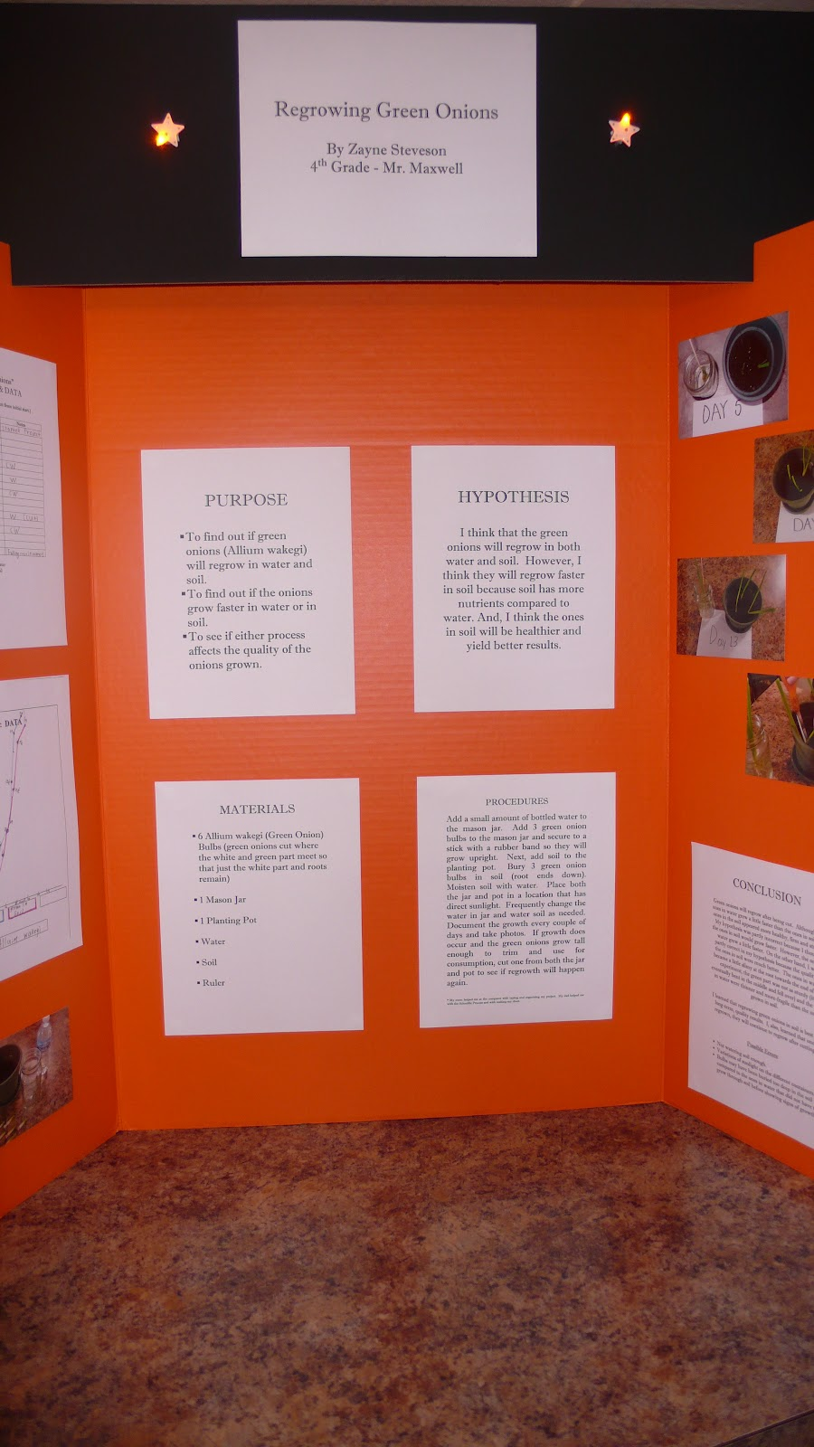 science fair projects for fourth graders We have provided a few 5th grade science fair project ideas that will challenge your kids to 4th grade science 7th grade science fair projects for.