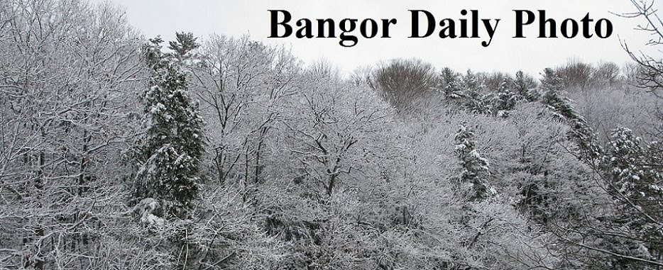 Bangor Daily Photo