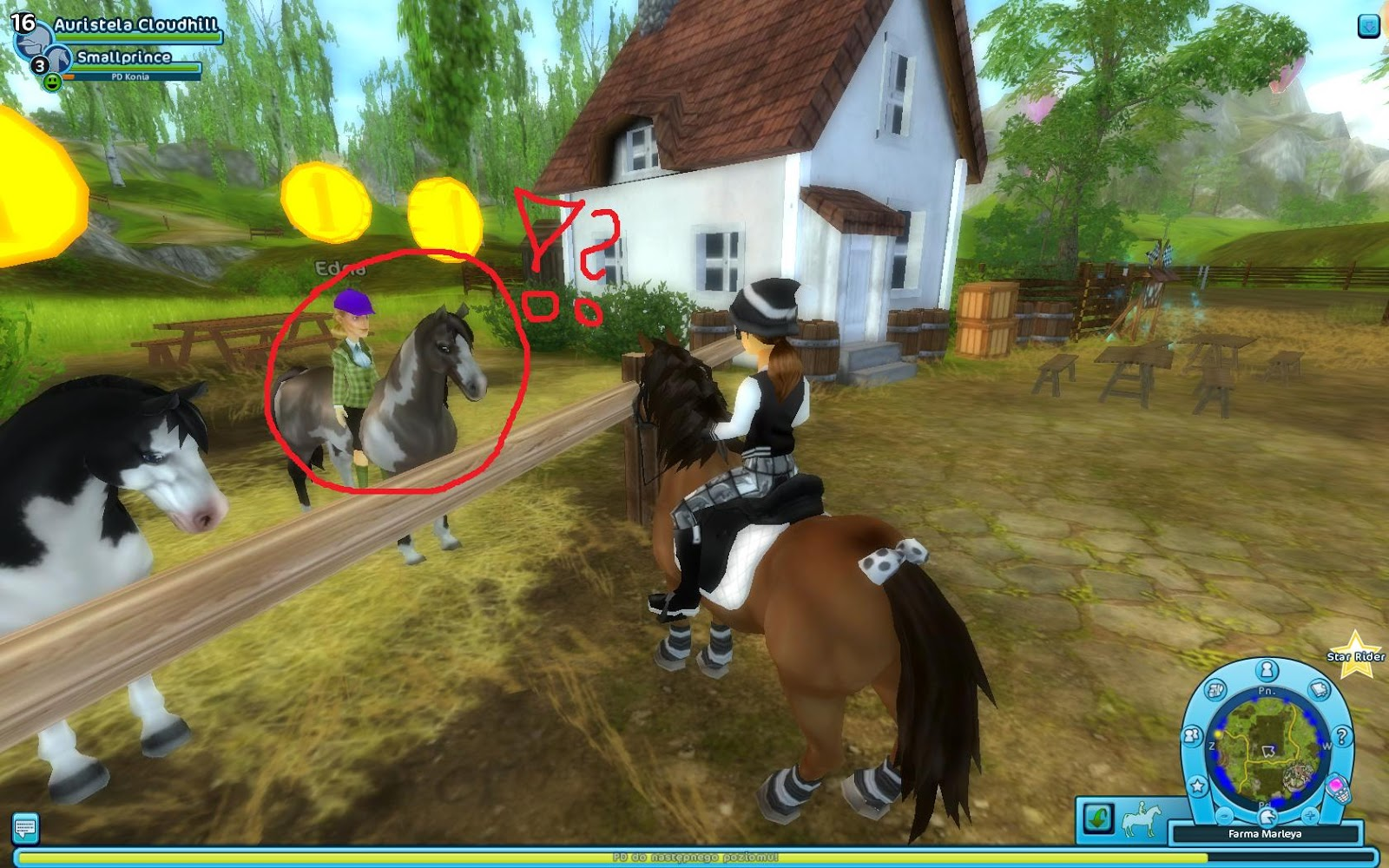 Horse Quest UK - Search