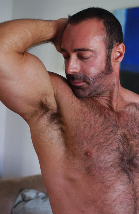 Theme, interesting hairy chest man gallery your