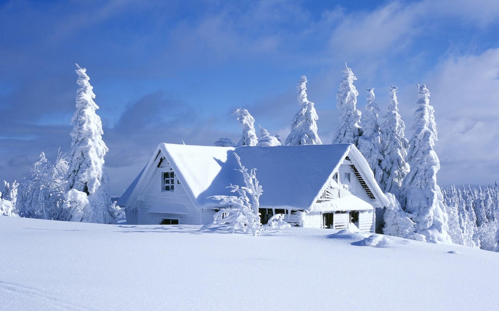 winter scene poster wallpaper art zeromin0