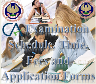 CA Exam Schedule May, 2013
