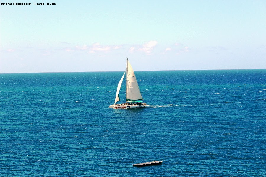 CATAMARAN SEA THE BEST