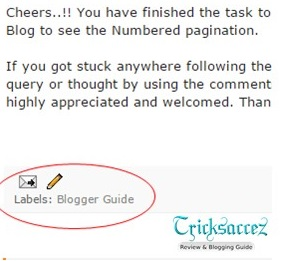 Remove labels from blogger template niche