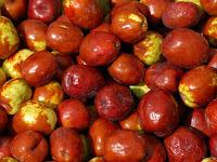 Ziziphus Fruit Pictures