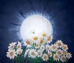 Dos cosas que adoro! La luna y las margaritas...