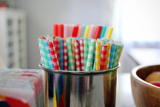 Kikkerland gingham paper straws