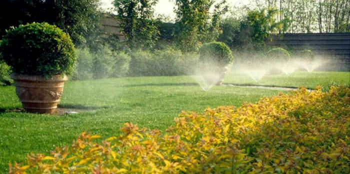 Il mondo in un giardino come e quando annaffiare le piante for Irrigazione piante