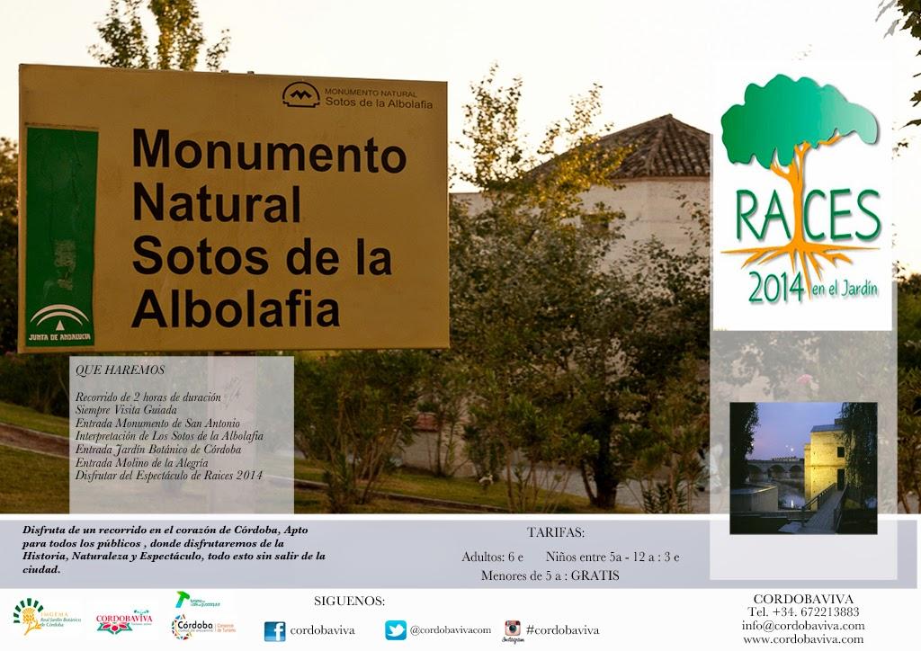 http://www.cordobaviva.com/actividad/Nocturna_Molinos___Raices_2014/521
