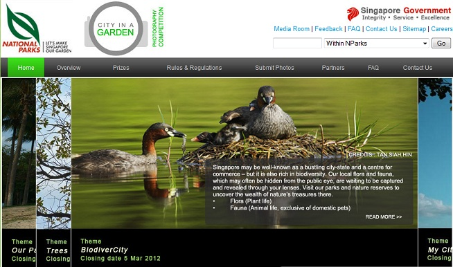 Celebrating Singapore's BioDiversity!: Biodiversity in Singapore ...