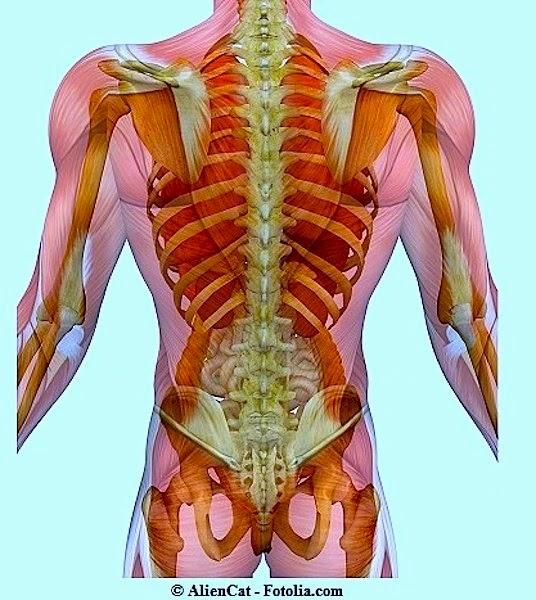 Cura di uno spasmo muscolare di un collo