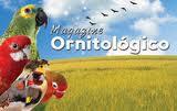 Magazine Ornitologico