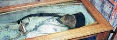 Ετικέτες: «Βησσαρίωνας» (το πτώμα)