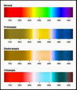 Jenis Jenis Buta Warna 2