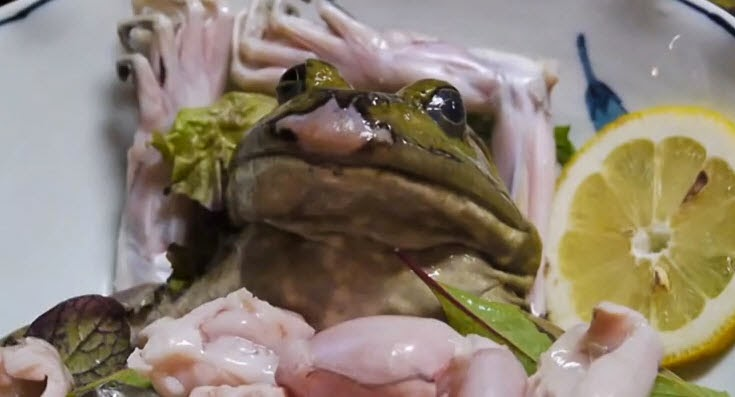 How People In Japan Eat Live Frog Sushi!