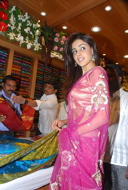 Actress Genelia in Sari Photos