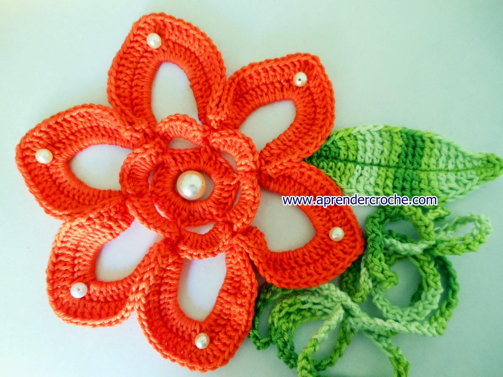 flores pérolas cenoura dvd video-aulas aprender croche com edinir-croche loja frete gratis curso