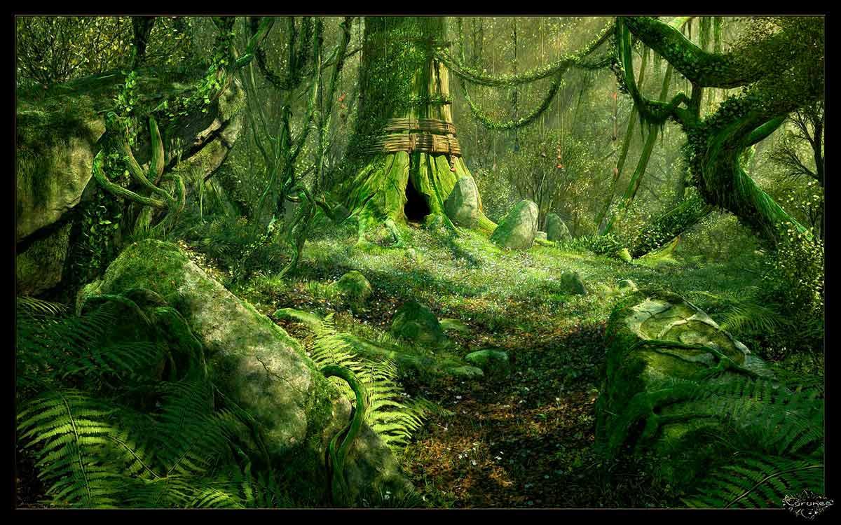 Il rifugio degli elfi gli ed i rapporti con animali