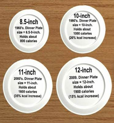 Plate+size+by+years.jpg