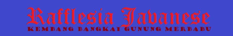 Rafflesia Java