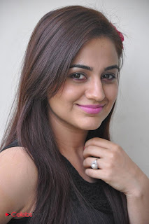 Aksha Latest Pictures at Rey Rey Success Meet  0012