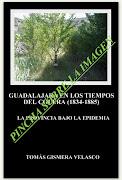 Guadalajara en los tiempos del cólera