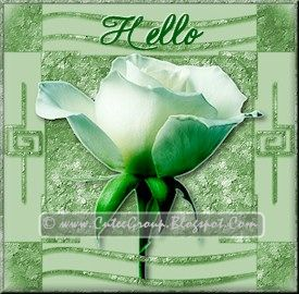 Green Rose extra including Hello