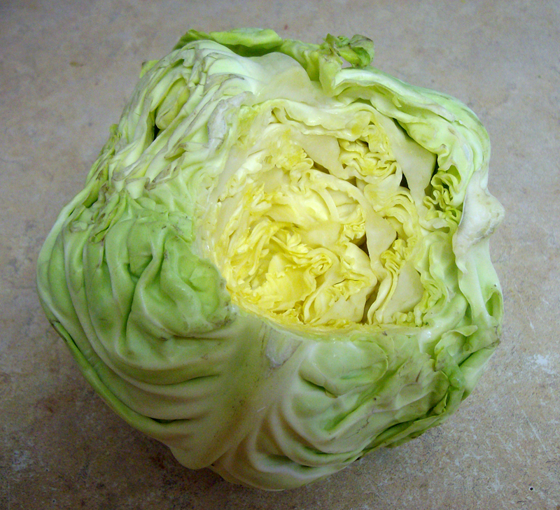 how to cut core from cabbage
